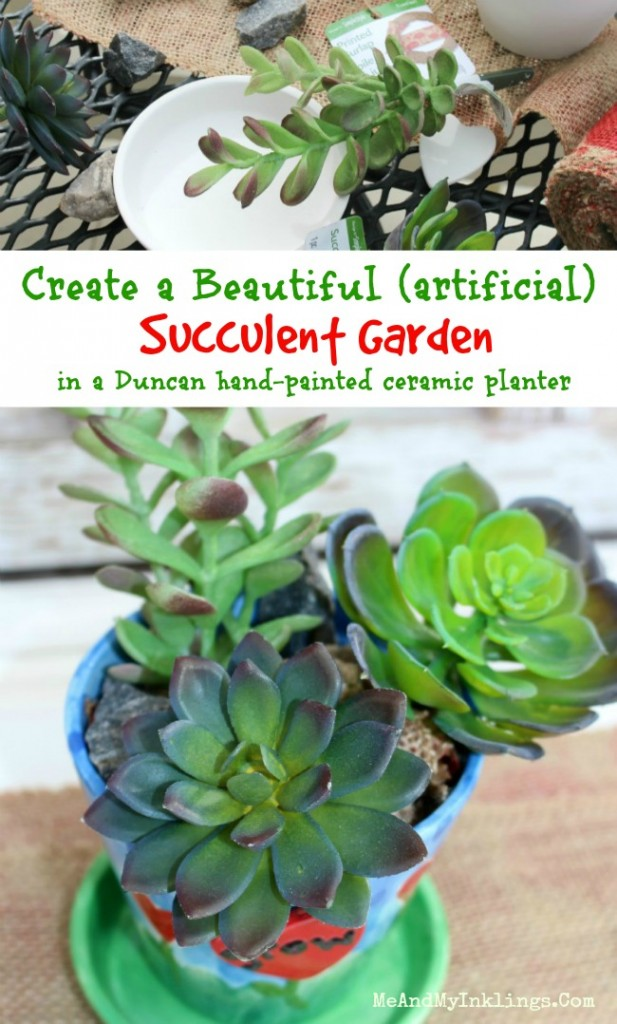 Succulent_Collage