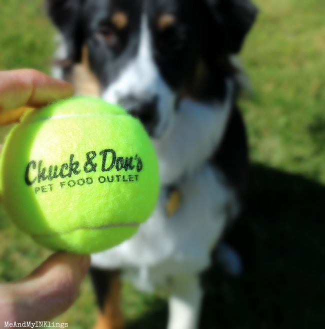 Chuck-and_Dons_Tennis-Ball