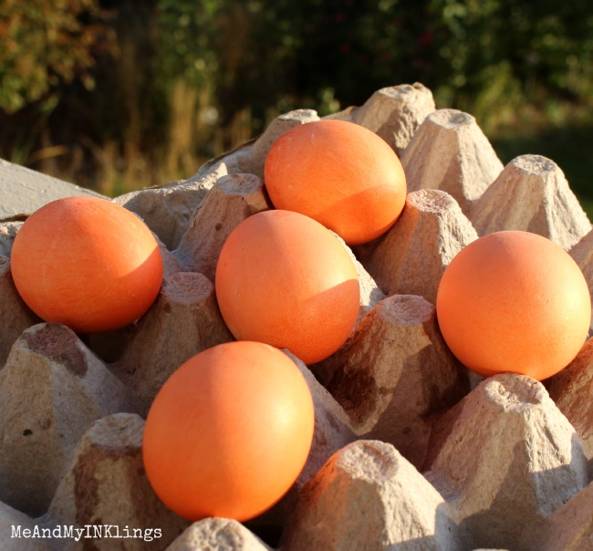 Dyed_Orange_Eggs