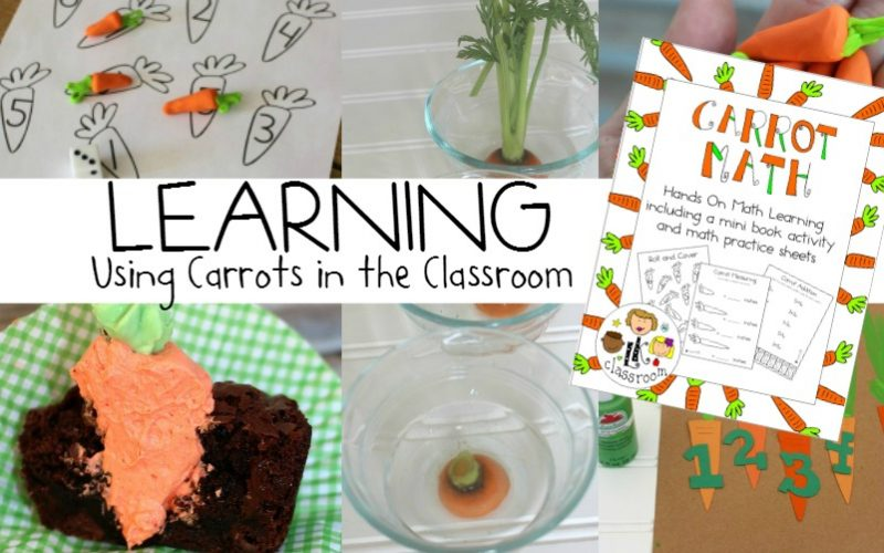 Carrots in the Classroom