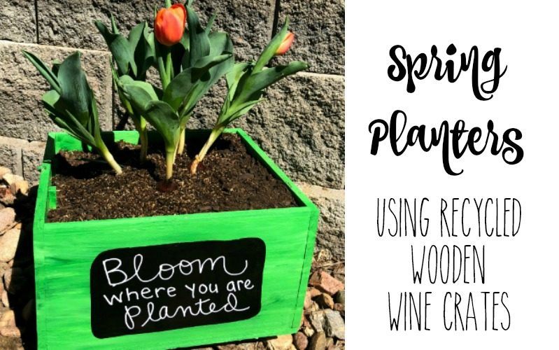 DIY Springtime Planters from Recycled Boxes