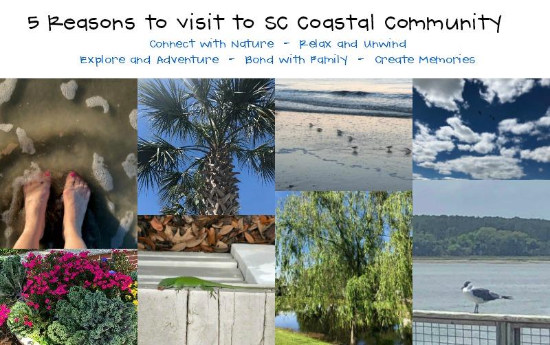 Top Five Reasons to Visit the Ocean